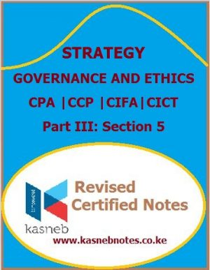 Strategy, Governance and Ethics